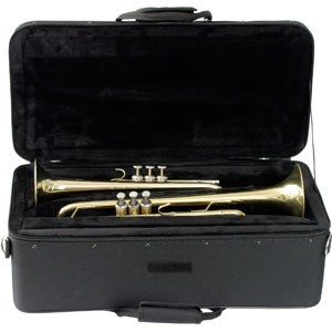 Protec IP-301D double trumpet case