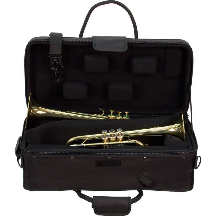 Protec IP-301DWL double trumpet case